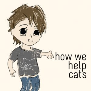 How we help cats at Trendy Little Sweethearts