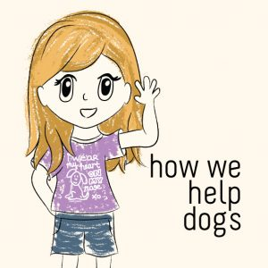 How we help dogs at Trendy Little Sweethearts