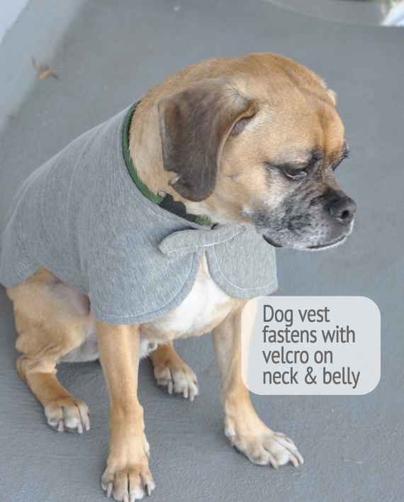 Super cute and soft dog vest made from recycled bottles and reclaimed cotton! Trendy Little Sweethearts