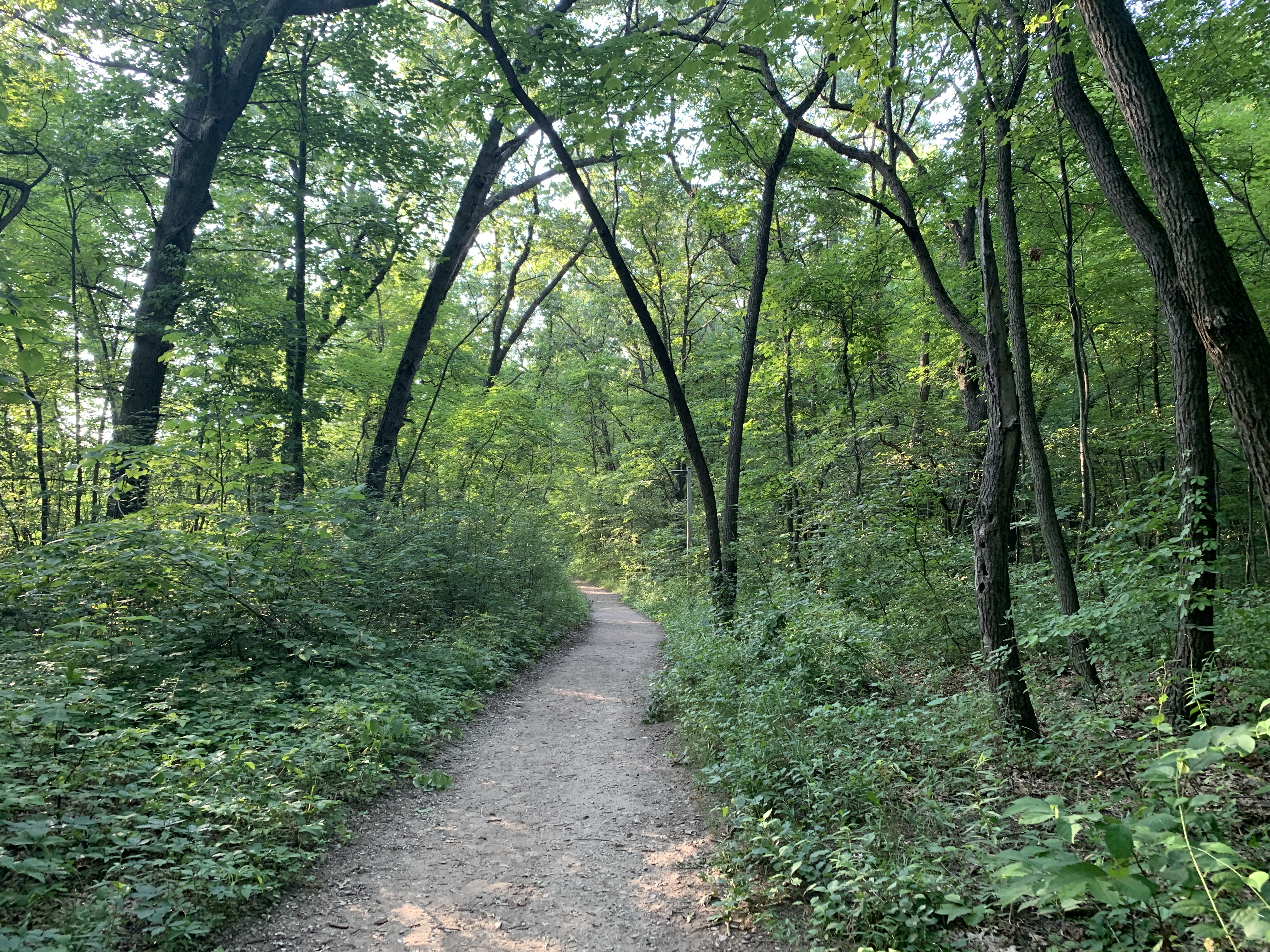 Hiking in Indiana Dunes National Park