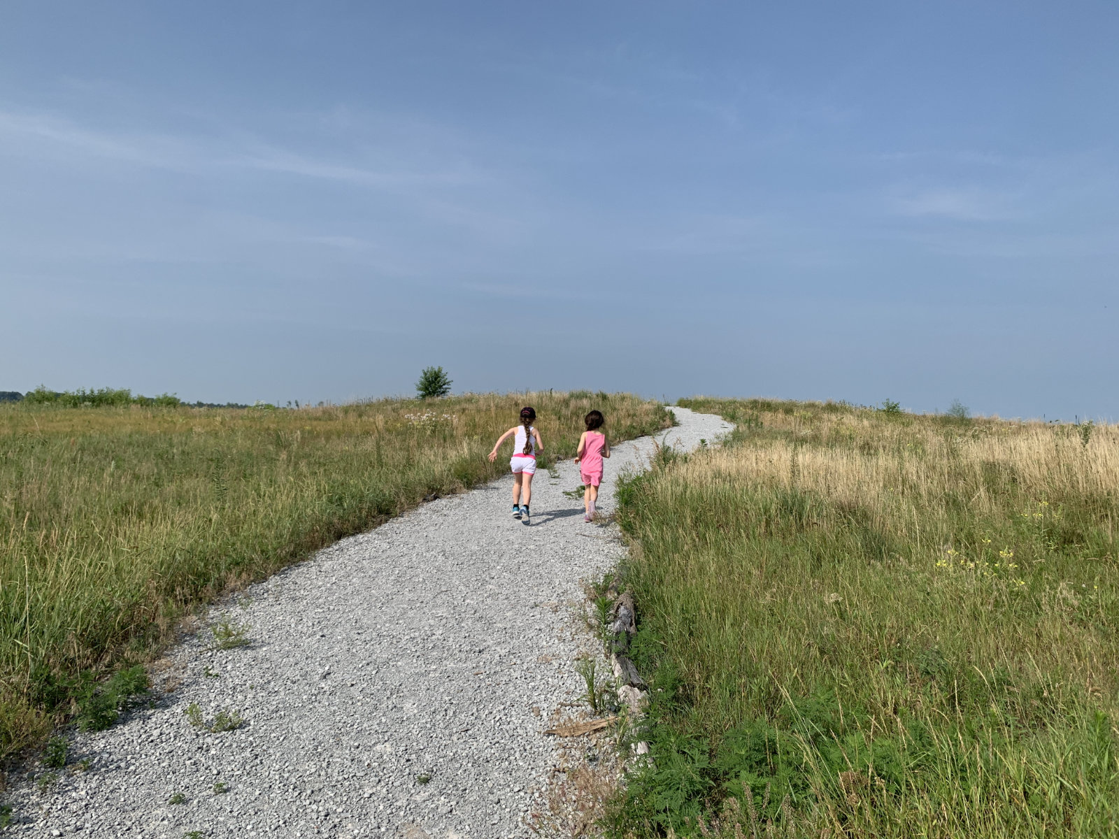 Hiking in Indiana to see the national mammal of USA in Kankakee Sands