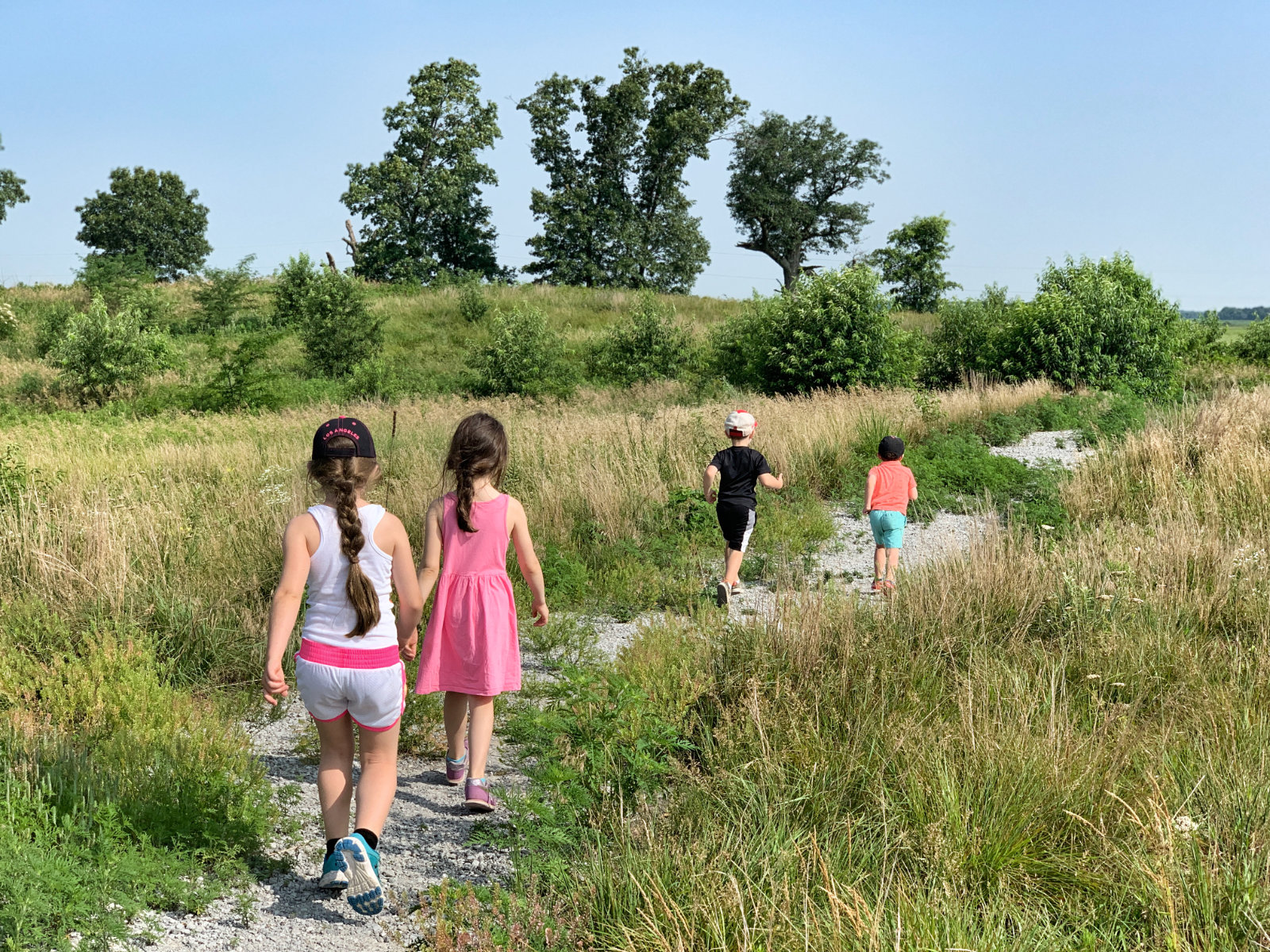 Hiking in Indiana at Kankakee Sands looking for bison