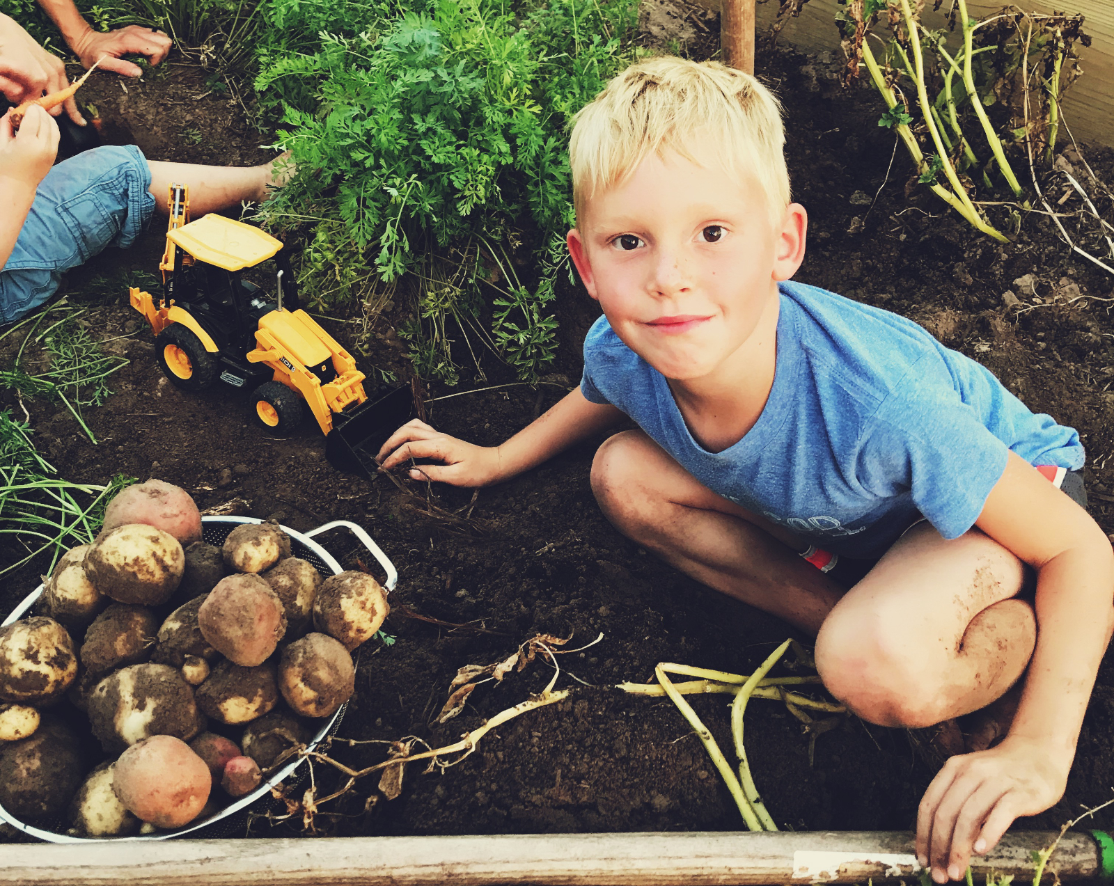 Healthy eating for kids. 4 things to keep in mind while trying to get your kids to eat healthy with Brooke Freeman, nutritional health coach and founder of nonprofit Natural Freedom Farm | For Animals For Earth