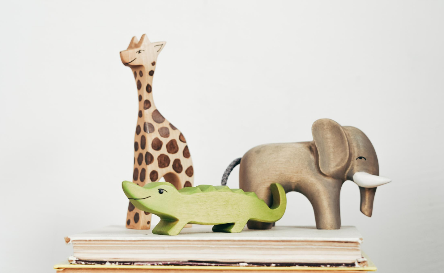 List of 8 Unique Places to Donate Gently Used Kids Toys | For Animals For Earth