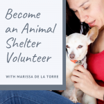 Marissa de la Torre talks to us about becoming an animal shelter volunteer in episode 7 of the For Animals For Earth Podcast | For Animals For Earth