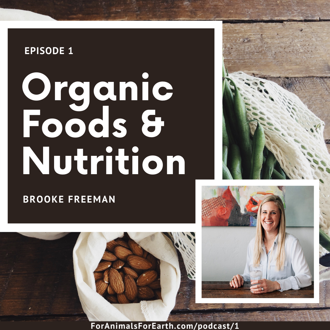 Organic foods improve health and nutrition. Grow your own food in the earth with Brooke Freeman on episode 1 of the For Animals For Earth Podcast.