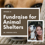 Learn how to help animal shelters with Dr. Monisha Seth of Franklins Friends in episode 10 of the For Animals For Earth Podcast