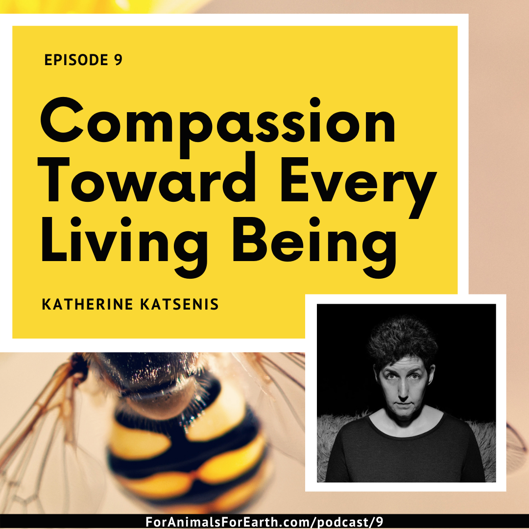 Compassion toward every living being, as displayed through the Mother-Child Project of Katherine Katsenis of Panos Productions Photography. From episode 9 of the For Animals For Earth Podcast