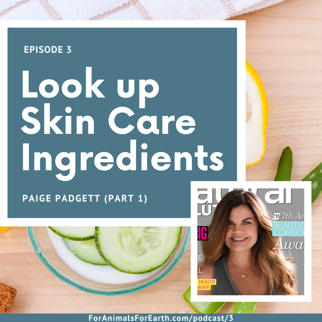 A chat about green beauty with Paige Padgett on the For Animals For Earth Podcast. Episodes 3, 4 and 5. In episode 3, we talk about looking up products with the EWG and Skin Carisma to see how they are for the environment and our bodies. | For Animals For Earth