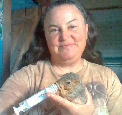 Ame and I go behind the scenes of wildlife rescue, rehabilitating and releasing animals back into the wild on her farm in Kentucky. On the For Animals For Earth Podcast with Ame Vanorio of Fox Run Environmental Education Center.