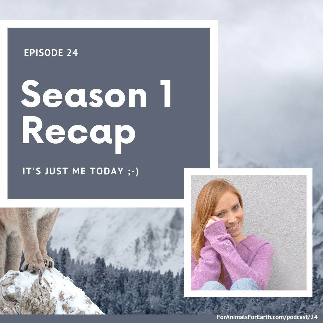 For Animals For Earth podcast - Season 1 Recap - Simple ideas to make a difference for animals and the earth with Brandy Heyde Montague