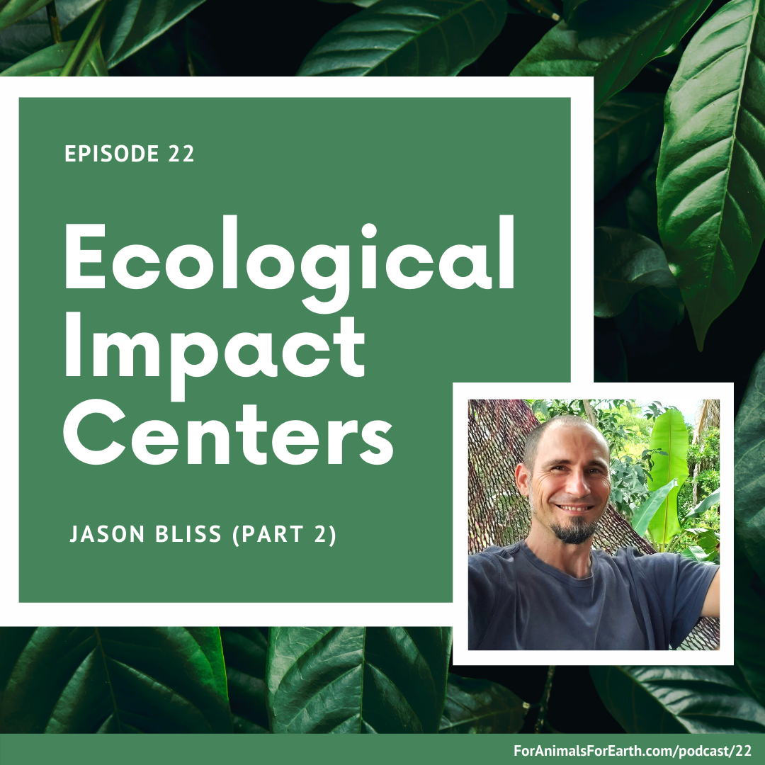 Jason Bliss from the Sharing Insights Podcast joins me from Pérez Zeledón, Costa Rica to talk about permaculture, ecological impact centers, and living a life of impact.