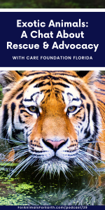 Christin runs CARE Foundation, an exotic animals rescue and wildlife education center just north of Walt Disney World.
