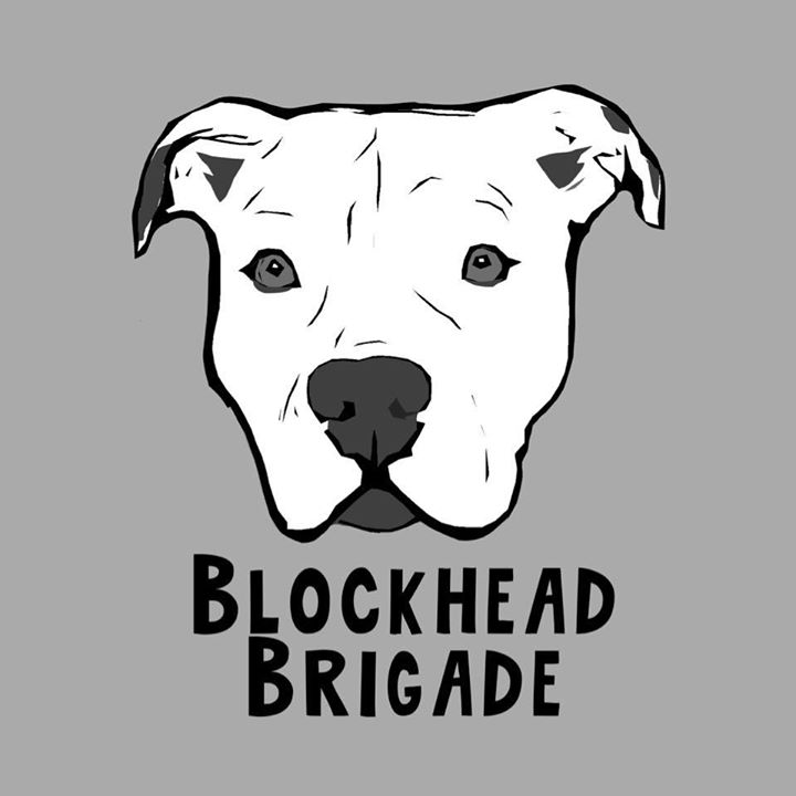 For Animals For Earth recommends supporting Blockhead Brigade
