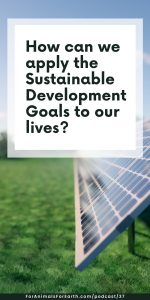 How can we apply the UN Sustainable Development Goals to our personal lives? The UN website has a lot of great resources. To save you time, I've linked my favorite in this post.