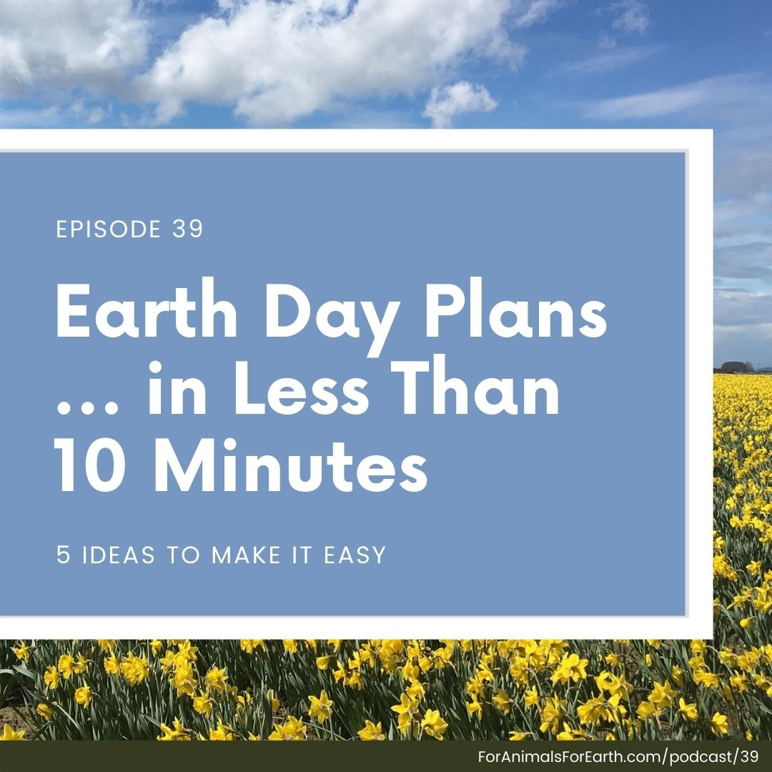 5 ideas for Earth Day activities that will only take you 10 minutes to plan. Episode 39, For Animals For Earth Podcast