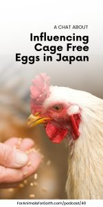 Maho joins me to talk about farm animal protection in Japan.She specifically works to free egg laying hens from confinement for egg production through The Humane League Japan.