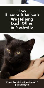 How humans and animals are helping each other in Nashville. Affordable housing and pet rescue, Crossroads Campus, shares the healing power of human animal relationships in episode 42 of the For Animals For Earth podcast.