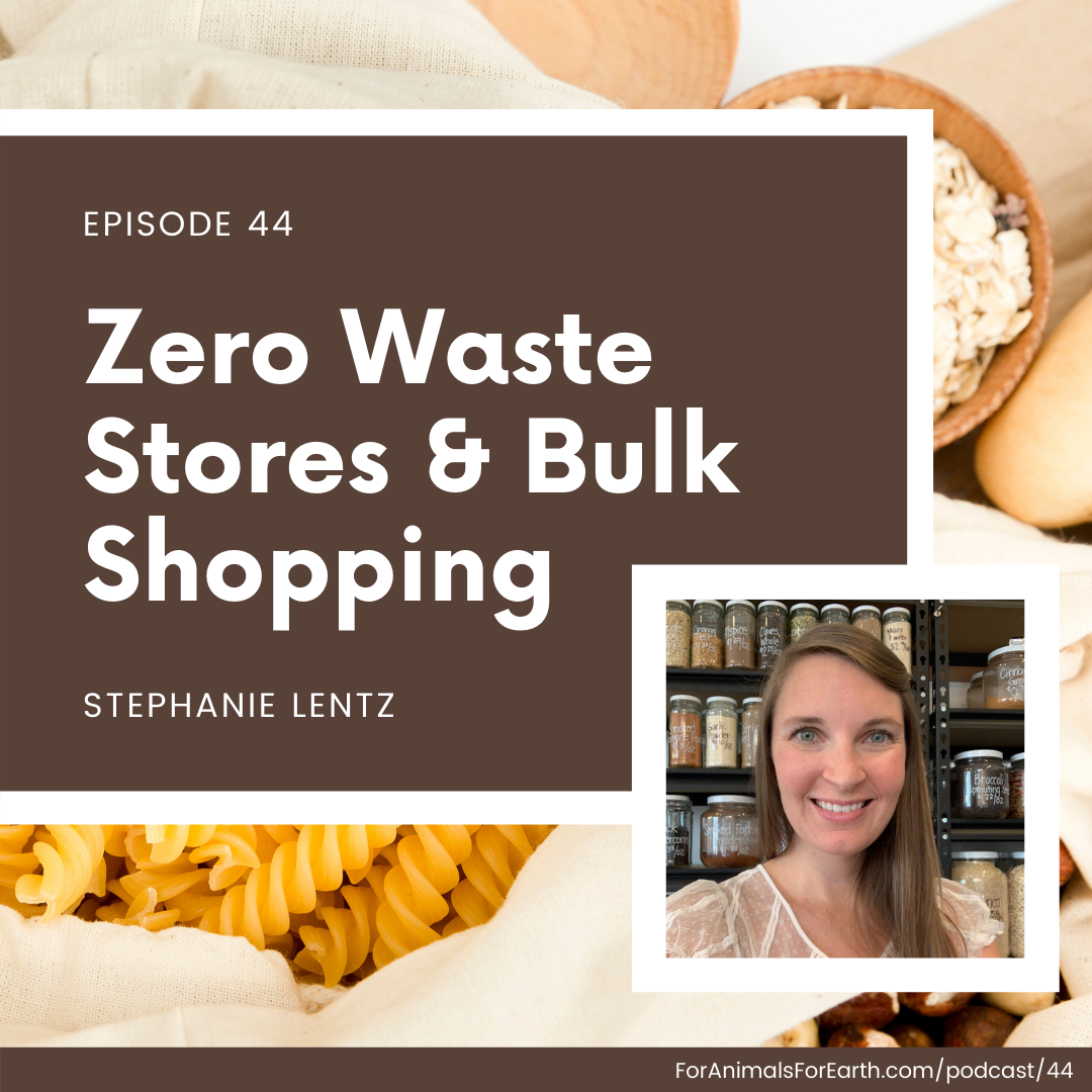 Stephanie Lentz, CEO of Scoop Marketplace, joins me to talk about zero waste stores, zero waste grocery, and bulk shopping in episode 44, For Animals For Earth podcast.