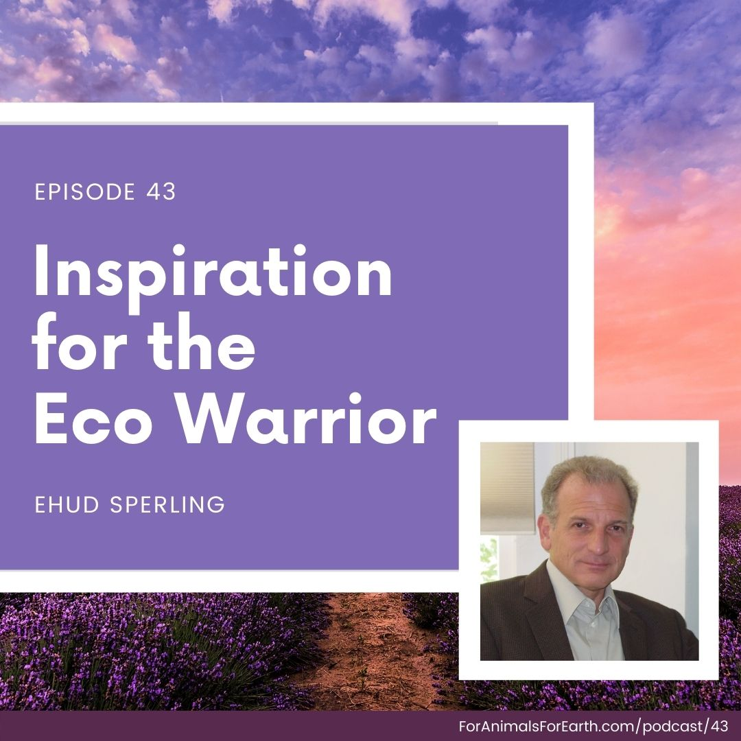 Being an eco warrior can be exhausting, but Ehud Sperling, founder and president of Inner Traditions International, shares inspiration to help us keep going in episode 43 of the For Animals. For Earth. podcast.