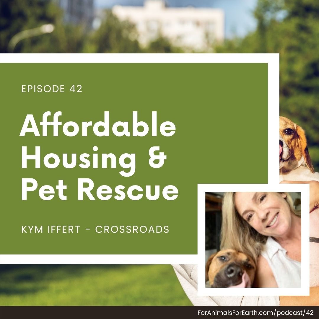Affordable housing and pet rescue, Crossroads Campus, shares the healing power of human animal relationships in episode 42 of the For Animals For Earth podcast.