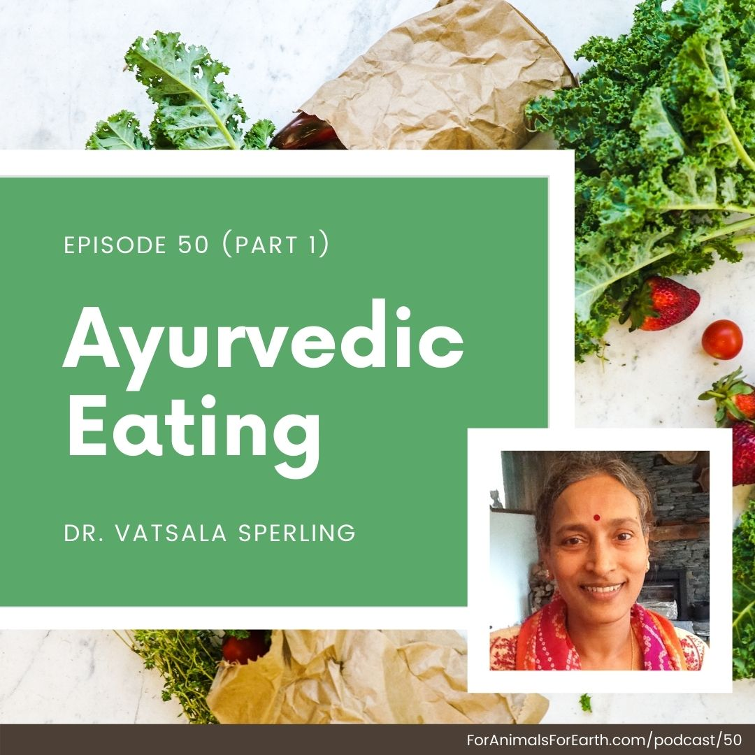 Dr. Vatsala Sperling walks me through how ayurvedic eating cleanses our body and gives us radiance, vitality and energy as we approach life. Episodes 50 and 51 of the For Animals. For Earth. podcast.