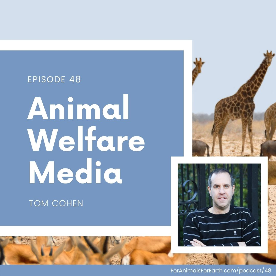 Tom, executive producer at Kibble Creative, tells me about the animal welfare movies, videos, and short films he makes to help animals in episode 48.